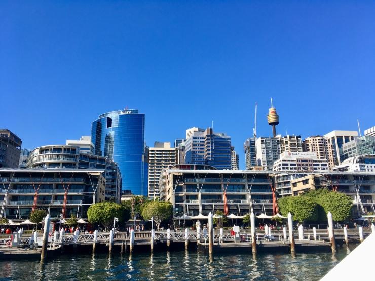 Darling harbour baleines sydney australie