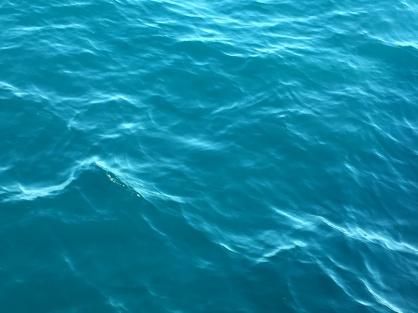 eau ocean sydney australie