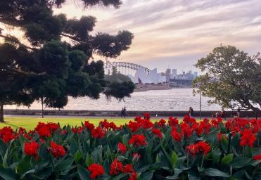 coucher-soleil-opera-sydney-australie-bilan-3-mois.jpg