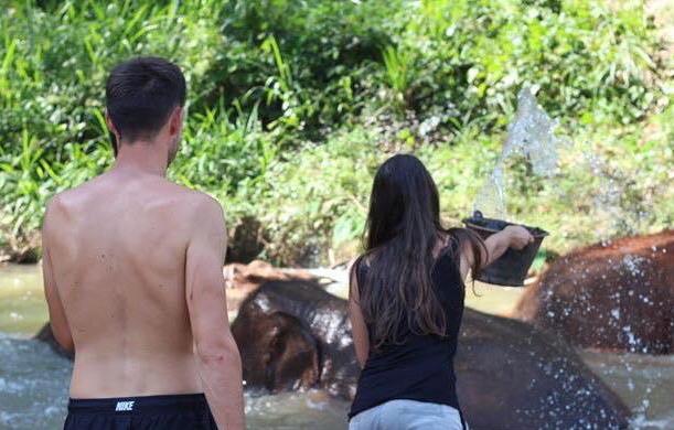 bain riviere elephant thailande