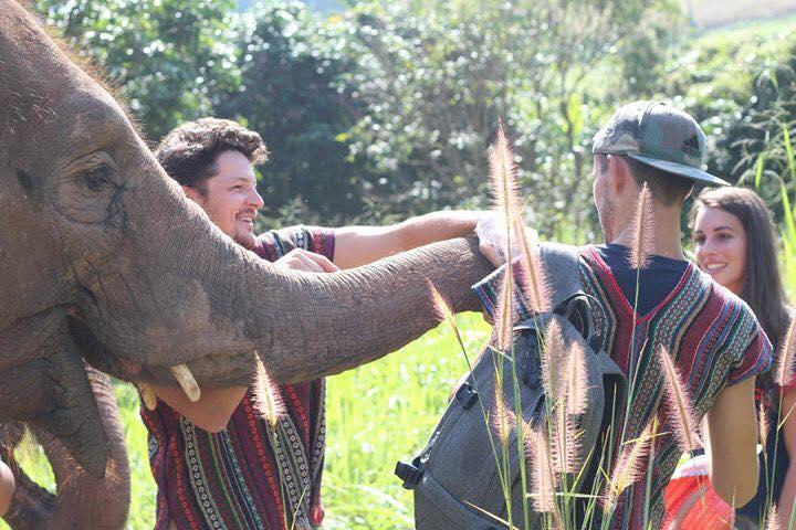 elephant nature park asie thailande