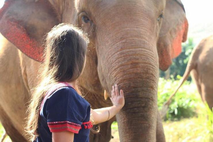 monter à dos éléphant asie